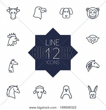 Set Of 12 Animal Outline Icons Set.Collection Of Horse, Rabbit, Cock And Other Elements.