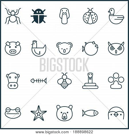 Zoo Icons Set. Collection Of Marsupial, Starfish, Serpent And Other Elements. Also Includes Symbols Such As Panda, Paw, Kine.
