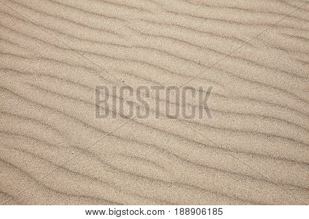 Background of beach sand ripples found on a coastline