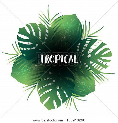 Tropic palm leaves background. Vector exotic jungle view with leaves.