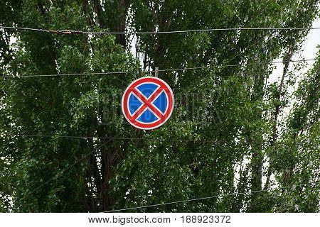 Round road sign on wires against the background of green branches