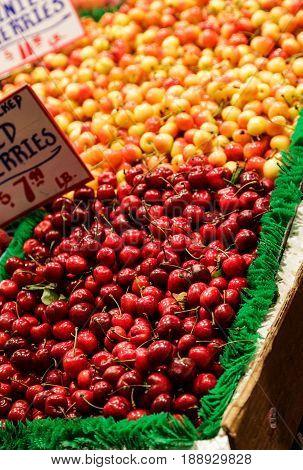 Fresh Bing and Ranier Cherries in a Market