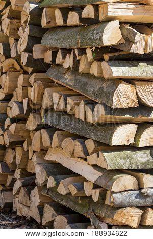 vice-cut tree trunks