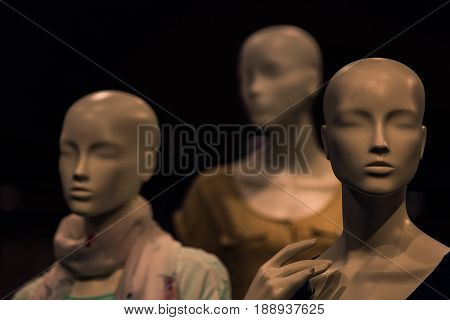Group Of Fashion Model Mannequin