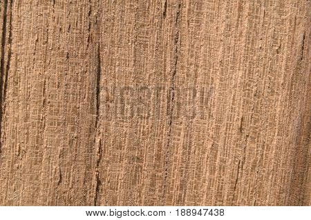 Line wood texture brown with yellow tinge color