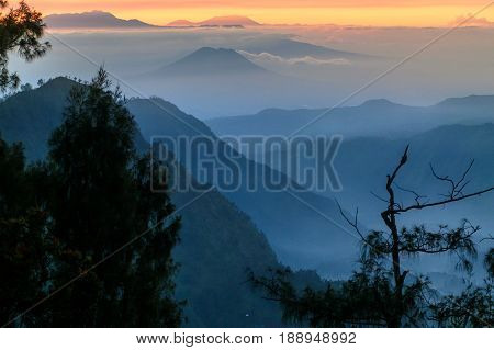 Bromo-Tengger-Semeru National Park volcano mountain landscape covered with fog,tropical trees & colourful sky clouds at beautiful sunrise from Penanjakan view point in Jawa,Indonesia.