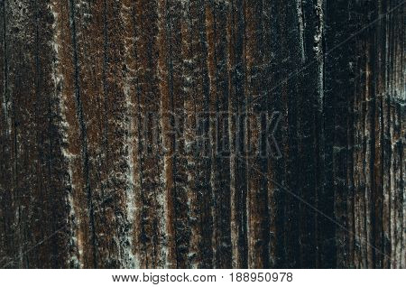 Texture of a wooden board dark color vertical lines of a tree