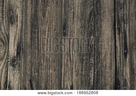 Dark light of a wooden texture vertical direction neutral shades of paint