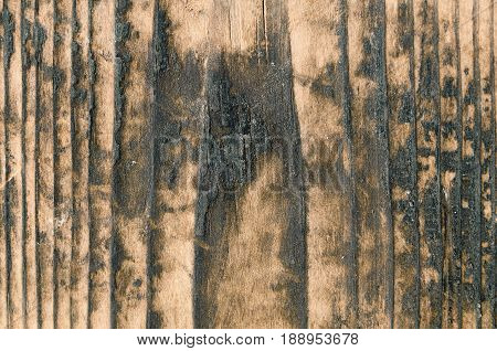 Burnt surface of a wooden board with yellow shades of color