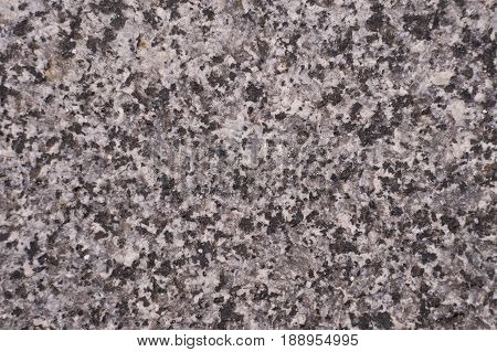 Rough gray concrete slab close-up. macro isolated