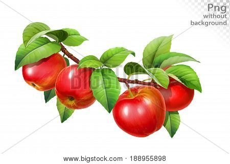 Red apple on a branch with leaves, png without background
