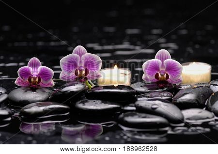 Beautiful three orchid with twocandle and therapy stones