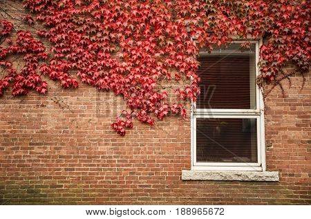 Old red brick wall with wooden window in New England USA.