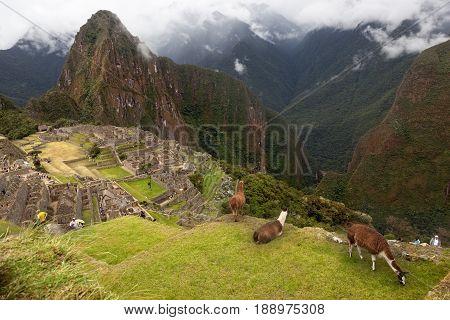 MACHUPICHU-JUNE 04 2015: Spiritual morning mist rises over Inca head mountain at Machu Picchu with Huana Picchu in background, Peru on June 6, 2015