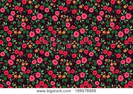 Seamless pattern with flowers for design. Small red and pink flowers. Black background. Modern floral background. The elegant the template for fashion prints.