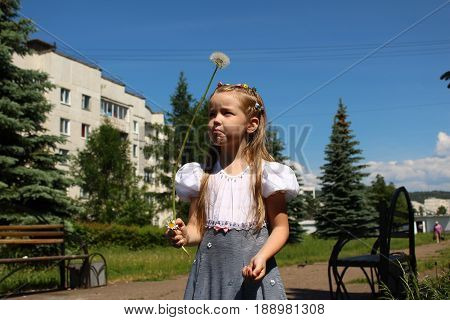 A girl looks suspiciously at a huge dandelion
