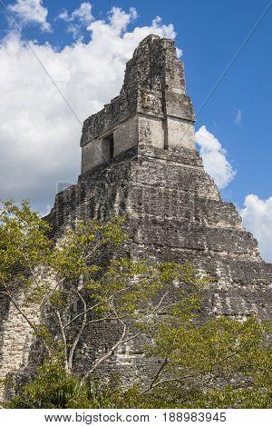 Temple I  In Tikal Guatamala