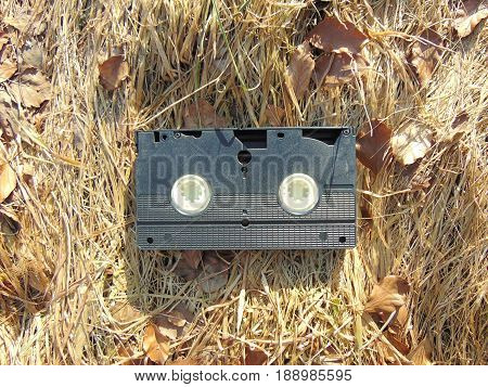 VHS Videotape laying on straw with brown leaves