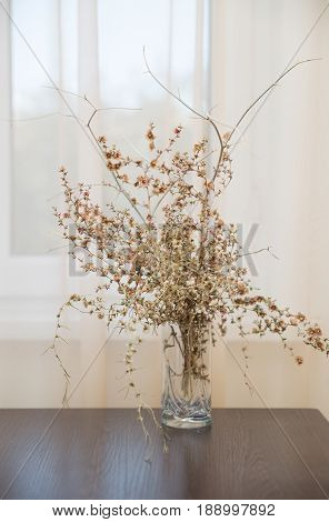 Dry bouquet of autumn desert plants in a glass on a table by the window