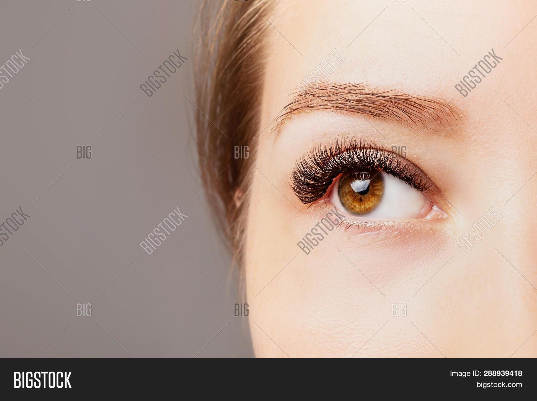 Eyelash Extensions, Image & Photo (Free Trial) | Bigstock