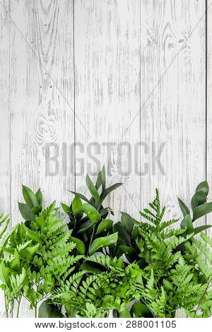 Spring Composition. Young Green Leaves And Branches On White Wooden Background Top View Space For Te