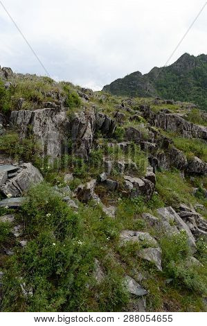 Altai Republic, Russia - June 8, 2018: Kalbak-tash Tract, Famous For Its Petroglyphs With Images Of
