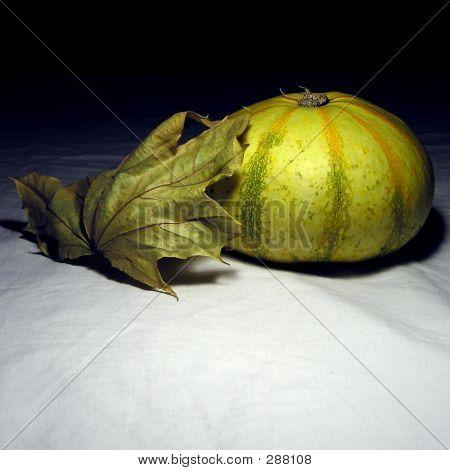 Pumpkin And The Leaf