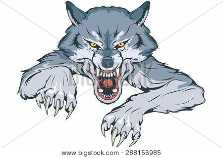 Gray Wolf Suitable As Logo For Team Mascot, Wild Wolf Drawing Sketch, Wolf Mascot Graphic, Vector Gr