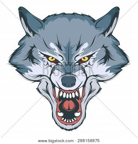 Wolf Head Vector Drawing, Wolf Face Drawing Sketch, Wolf Head Colored Drawing, Vector Graphics To De