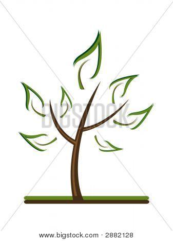 Clean Tree