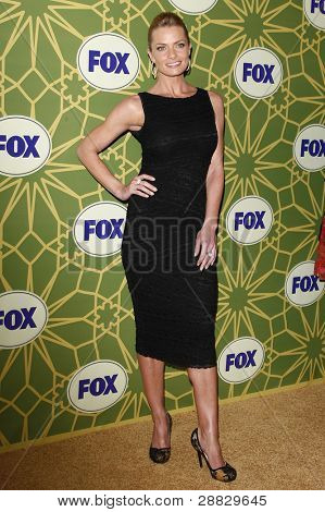 LOS ANGELES - JAN 8:  Jaime Pressly at the FOX All Star Winter TCA Party at Castle Green on January 8, 2012 in Pasadena, California.