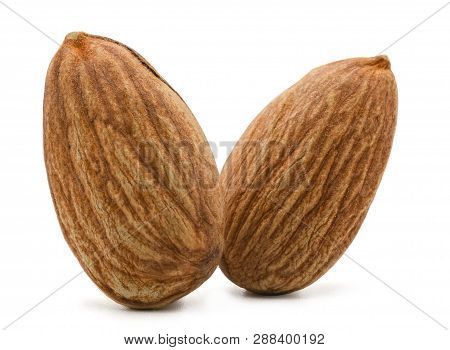 Isolated Of Almond Nut  On White Background. Clipping Path -image.