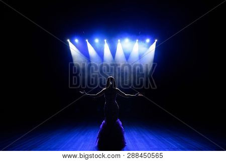 Singer Performing On Stage With Lights. Concert. View From The Auditorium