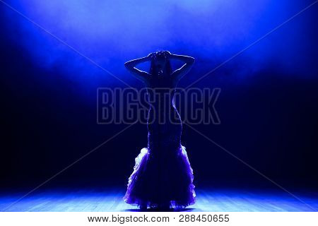 Singer In Silhouette. A Young Woman Singer On Stage During A Concert.