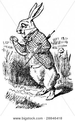 White Rabbit looking at it's watch. Illustration from the book