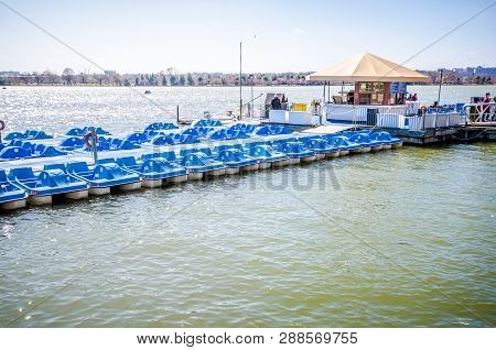 Washington Dc - May 1, 2018: Paddleboats For Rent On The Tidal Basin In Washington Dc. This Water Sp