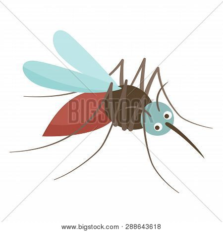 Anopheles Mosquito Drinks Blood. Viral Source Of Diseases, Dangerous Insect.