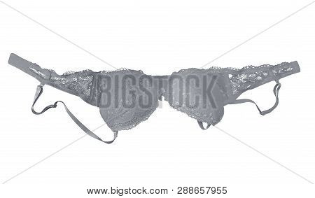White Lace Brassiere Isolated On White. Clipping Path Included.