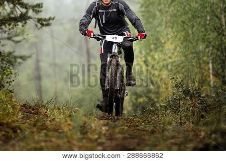 Mountain Biker On Dirty Cycle Riding Uphill Forest Trail
