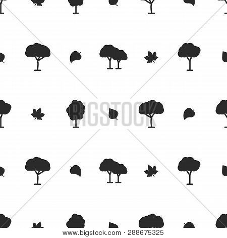 Tree Vector Pattern On White Background For Natural Product Store, Garden, Nature Cosmetics, Ecology