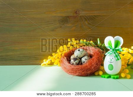 Easter festive background. Easter bunnies and Easter eggs in the nest near the mimosa flowers, free space for holiday Easter text
