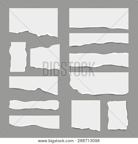 Ripped White Paper. Torn Light Scrap Note Paper For Notes Pieces Vector Realistic Pictures For Banne