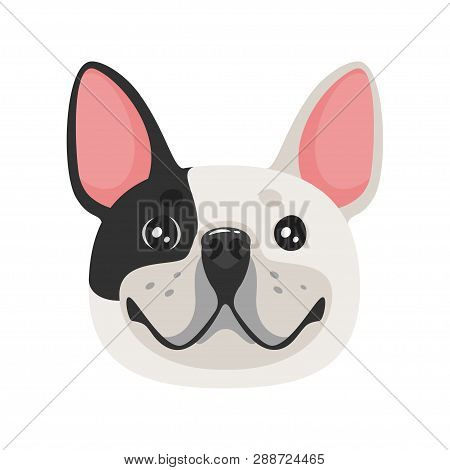 French Bulldog Dog Face. Adorable Pet. Vector Illustration Isolated On White Background.