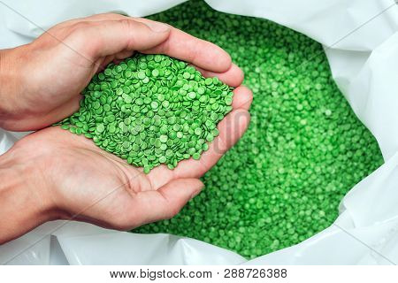 A Hands Hold Or Touching Biodegradable Plastic Pellets, Plastic Polymer Dye Granules Color Clear Gre
