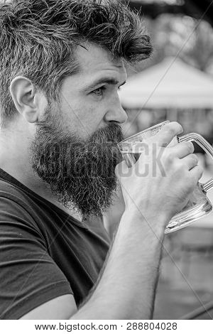 Man With Beard And Mustache Holds Glass With Beer While Relaxing At Cafe Terrace. Guy Having Rest Wi