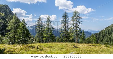 Idyllic Mountain Landscape In The Alps: Beautiful Scenery Of Meadow, Trees, Mountains And Blue Sky