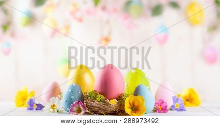 Easter composition with colorful Easter eggs and spring flowers on wooden background. Easter card with copy space.