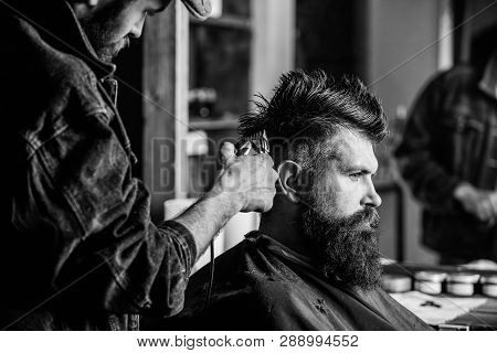 Barber With Hair Clipper Works On Hairstyle For Bearded Man Barbershop Background. Barber Styling Ha