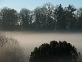 Misty Day In The Country