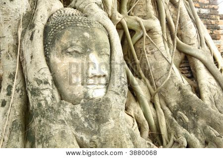 Head Of The Sandstone Buddha Image Thailand